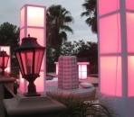 Light Up Columns, Pink